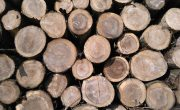 houtverkoop